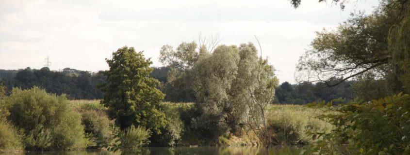 La Marne vue depuis les berges