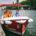 Marins d'eau douce : Reportage photo Les Bandits