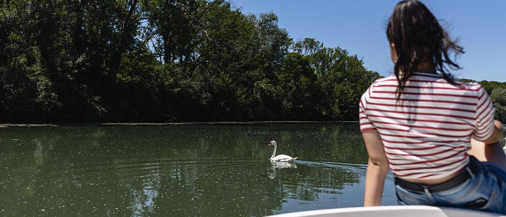 En vacances, faite une balade de 4h sur la Marne à bord de nos bateaux électriques sans permis