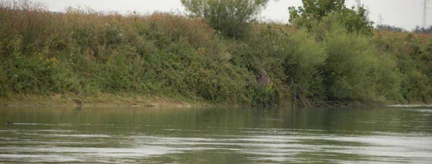 Bords de Marne sauvages à visiter en bateau électrique sans permis