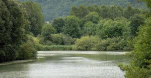 Des paysages riches et variés sur la Marne