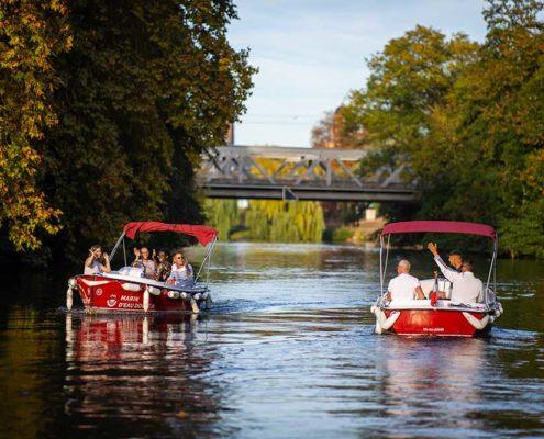 Naviguer sur l'Ill en bateau éléctrique. Une balade nature autour de Strasbourg