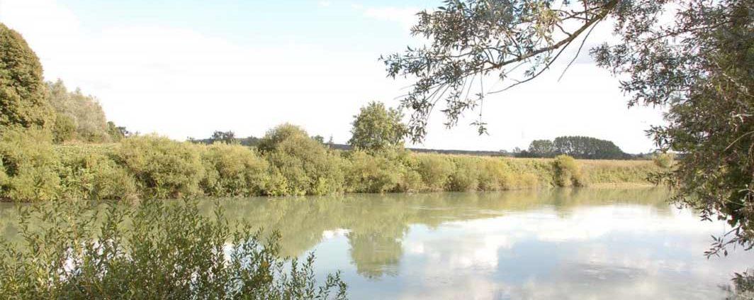 La Marne, écrin de nature à découvrir en bateau