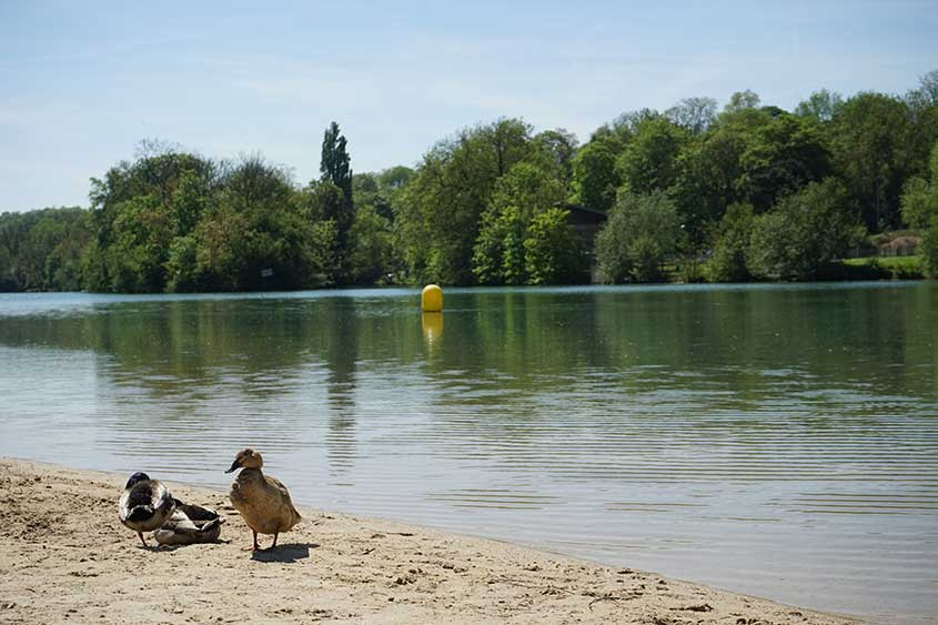 La plage de sable de Meaux est un bel endroit pour vous baigner