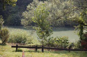 Une Marne champêtre depuis le restaurant Le Canotier