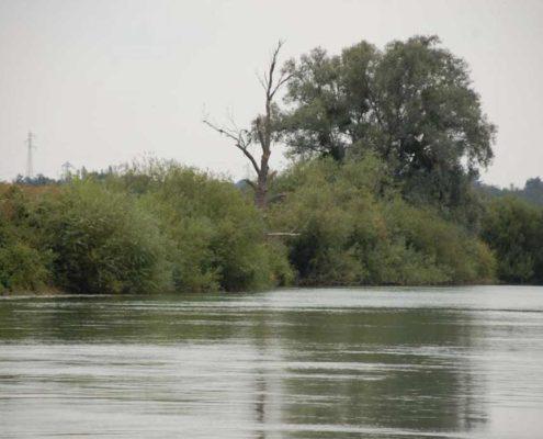 Naviguez en bateau sur la Marne avec nos bateaux sans permis